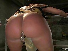 Horny Ariella Ferrera gets slammed up her wet slit